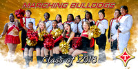 Marching_Bulldogs_Banner_Proof